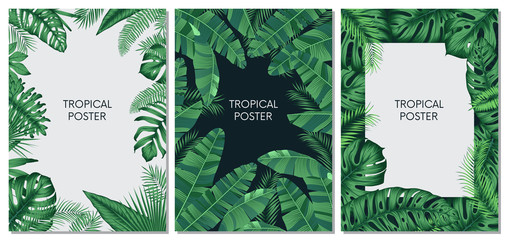 Vector design cards and banners with exotic leaves, tropical printable set Wall mural