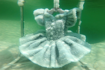 One of Israeli artist Sigalit Landau's pieces, a ballerina's tutu covered in salt crystal formations, is seen submerged in the hyper-saline waters of the Dead Sea, Israel, in this still image taken from a video