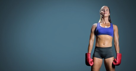 Female boxer with blank blue background