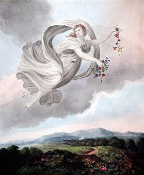 illustration of angel