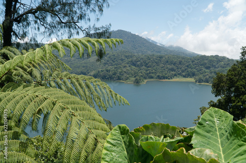 Lake Buyan,caldera lake at Bali  Beautiful lake with
