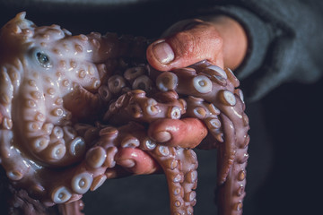 Man holds a raw octopus in his hands. Dark photo