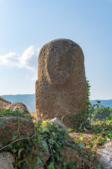 Menhir in archeological site of Filitosa, Corse, France