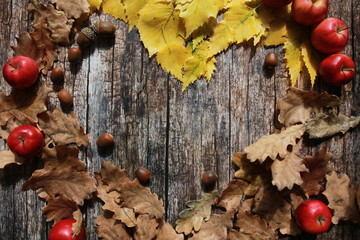 Fall foliage, red apples and acorns on wooden desk. Apple picking, September harvest, thanksgiving concept. Oak, birch leaves, planks, autumn background, heart shaped copy space