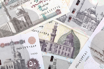 Egyptian Pounds, a business background