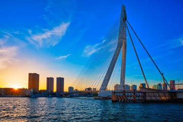 Photo sur Aluminium Rotterdam Erasmus Bridge on sunset, Rotterdam, Netherlands