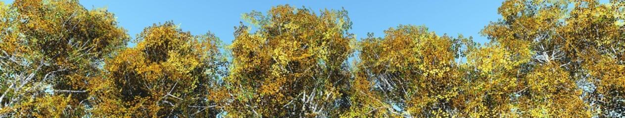 Autumn birch against the sky, 3d rendering