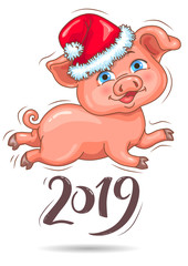 Little cute piggy in Santas hat 2019 New Year