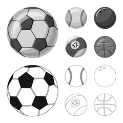 Vector design of sport and ball icon. Collection of sport and athletic stock vector illustration.