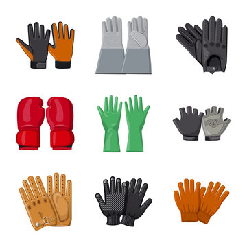 Vector illustration of glove and winter sign. Collection of glove and equipment stock vector illustration.