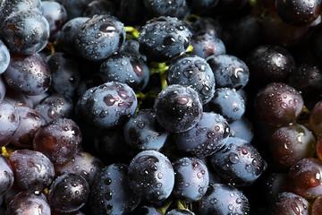 Bunch of fresh ripe juicy grapes as background, closeup Fototapete