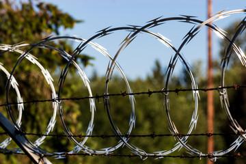 Razor wire fence shining in the sun