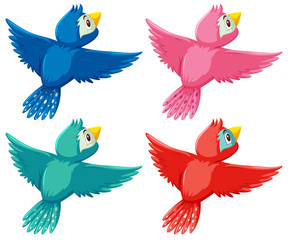 A set of differnt color bird
