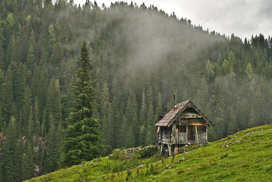 Traditional wooden shepherd huts on high alpine meadow in slovenian part of Julian Alps