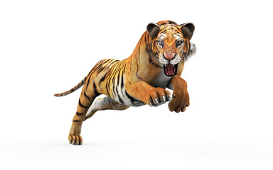 Dangerous Bengal Tiger Roaring and Jumping Isolated on White Background, with Clipping Path, 3d Illustration. Wall mural