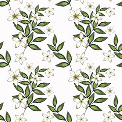 Seamless retro floral pattern .White flowers on white background.