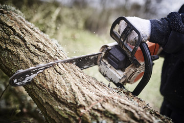 Working lumberjack with his chain saw