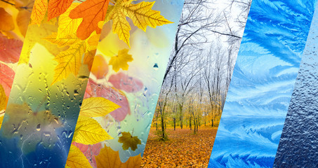 Fototapeta Fall and winter, weather forecast concept