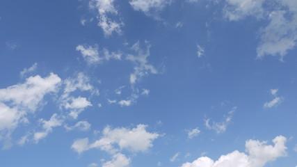 여름 하늘 구름