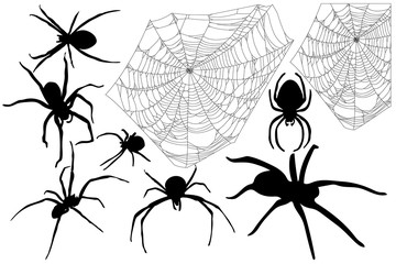 set for Halloween from spiders and their webs