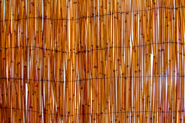 The texture of the cane roof, the roof of a dry cane - a view from the bottom to the skylight. Cover from dry bamboo, cane or cane.