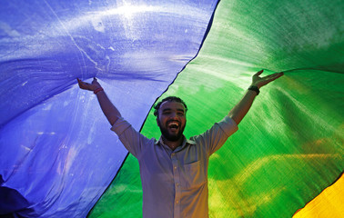 A supporter of the lesbian, gay, bisexual and transgender (LGBT) community holds a rainbow flag as he celebrates after the Supreme Court's verdict of decriminalizing gay sex and revocation of the  Section 377 law, during a march in Mumbai
