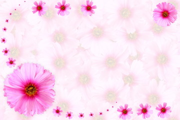 pink flower texture background for peace meditation spa health freedom nature concept background