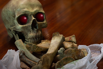 Old skull and bones in white bag on brown wooden table, still life image and space for texts.