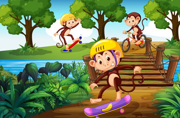Monkey and extreme sport in the park
