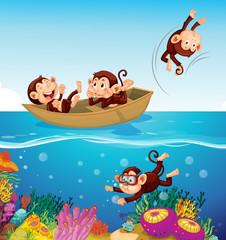 Happy monkey at the sea