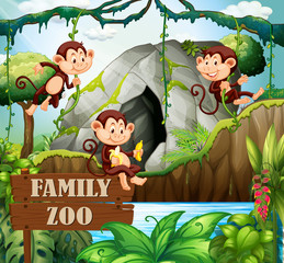 Monkey family in nature zoo