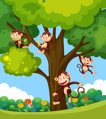 Monkey playing at the tree