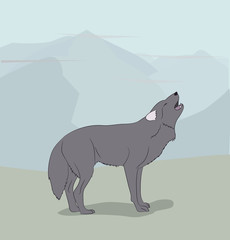 wolf on nature background