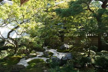 Schöner Japanischer Garten