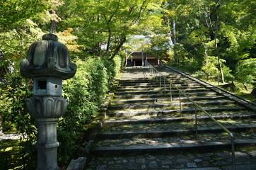 Stufen zum Tempel