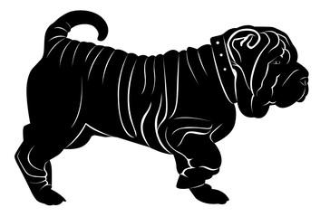 shar pei dog isolated on white background