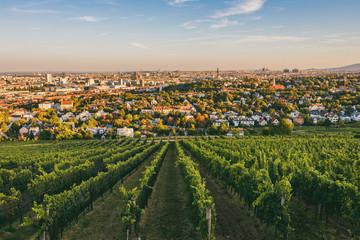 View from vineyards over Nussdorf in Vienna