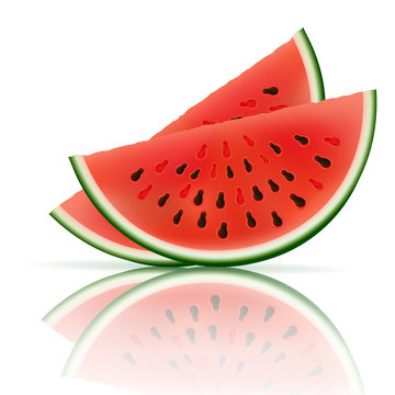 Slice of watermelon, summer fruit, vector icon