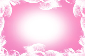 pink frame background for photo album peace meditation spa health freedom nature concept background