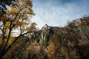 Autumn leaves and rock formation in Utah county.