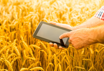 Tablet in farmer's hands - technology in agriculture