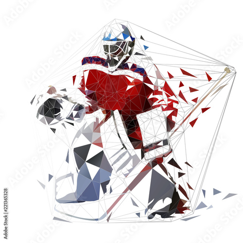 Hockey Goalie Geometric Vector Illustration Ice Hockey Player Low
