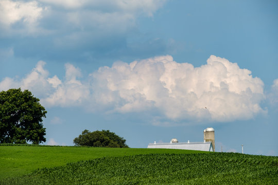 An Amish farm barn and silo sit behind a small hill and rows of corn in Amish Country