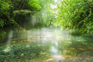 尚仁沢川の光芒