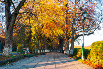 green city light on autumn embankment. beautiful urban scenery with colorful foliage on trees in the morning light