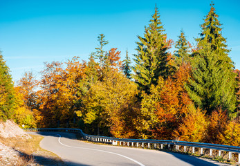 winding mountain road in autumn forest. lovely nature scenery with colorful foliage. travel europe by car concept