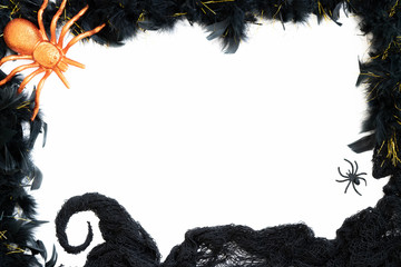 Halloween Border with white background and spider with spider web