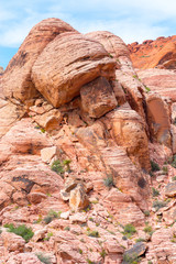 A unique rock formation in Red Rock Caynon