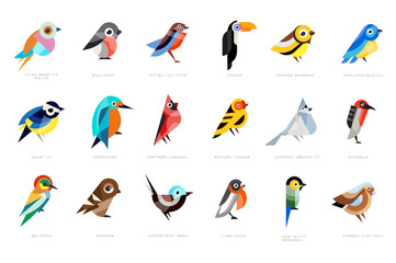 Collection of birds, lilac breasted roller, bullfinch, red bellied pitta, great tit, kingfisher, northern cardinal, bee eater, sparrow, superb fairy vector Illustrations Wall mural