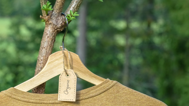 Organic clothes. Natural colored t-shirt hanging on wooden hanger in elder berry tree. Eco textile tag. Green forest, nature in background.